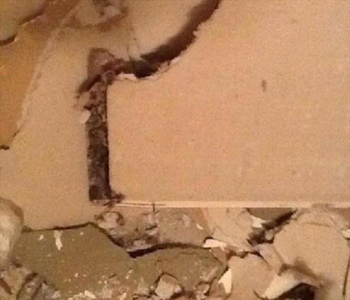 Mold Inside Wall