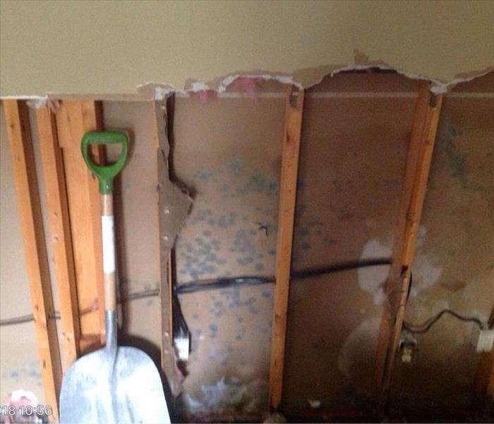 Mold Inside Walls