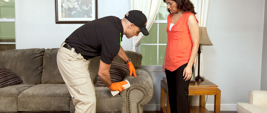 Greensboro, NC carpet upholstery cleaning